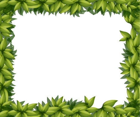 beautify: Illustration of a border made out of leaves Illustration