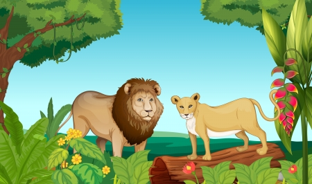 Illustration of a tiger and a lion in the jungle Vector