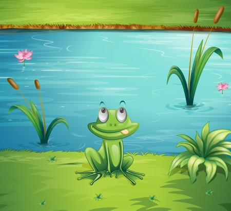 Illustration of a hungry frog at the side of the pond Vector