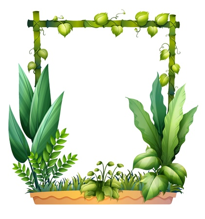 bamboo border: Illustration of green plants on a white background