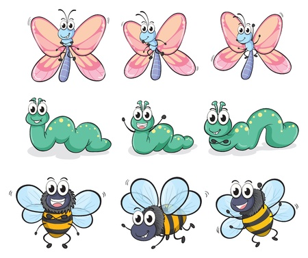 Illustration of a caterpillar, a butterfly and a bee on a white background Stock Vector - 17358098