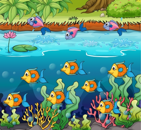 seaweeds: Illustration of a school of fish in the river
