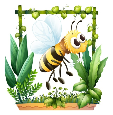 Illustration of a bee in the garden on a white background Stock Vector - 17358282