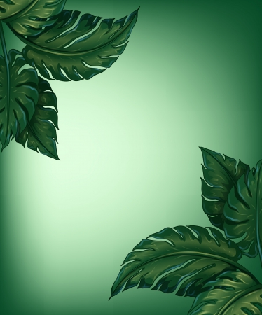 beautify: Illustration of greenery leaves for decoration Illustration