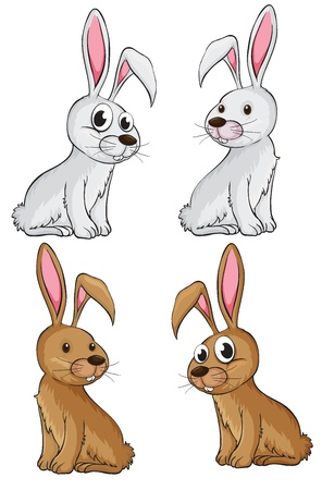 Illustration of four rabbits on a white background Stock Vector - 17410145