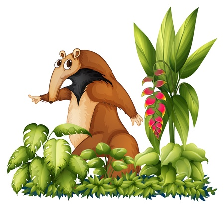 Illustration of an anteater with plants Vector