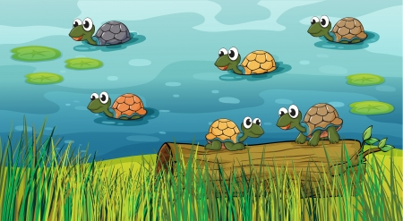 Illustration of a group of turtles in the river Vector