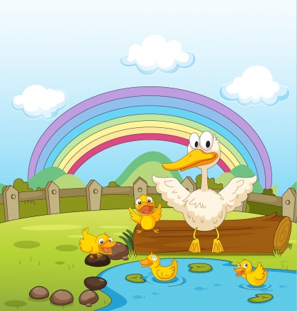 Illustration of ducks and a rainbow in nature Stock Vector - 17410117