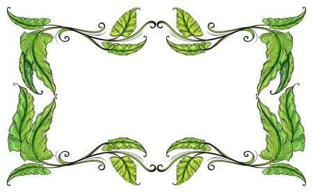 picure: Illustration of a border made of leaves on a white background Illustration