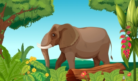 Illustration of a big elephant in the jungle Vector