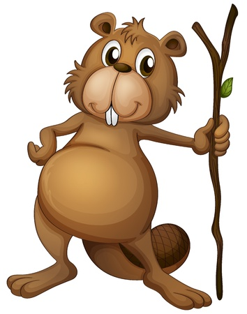 castor: Ilustración de un castor que sostiene un vástago en un fondo blanco