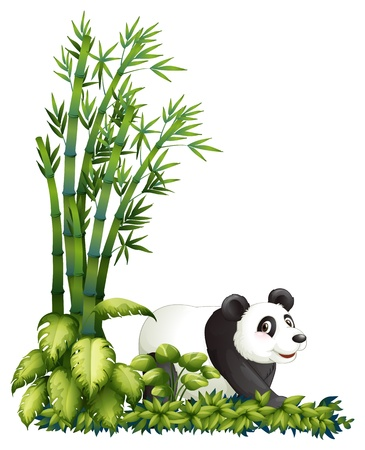 picure: Illustration of a panda hiding on a white background Illustration