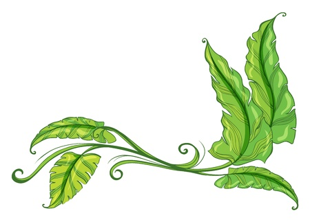 Illustration of a green border on a white background Vector