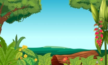 Ilustración de la selva con árboles y plantas