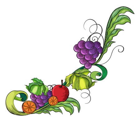 beautification: Illustration of a fruity border on a white background Illustration