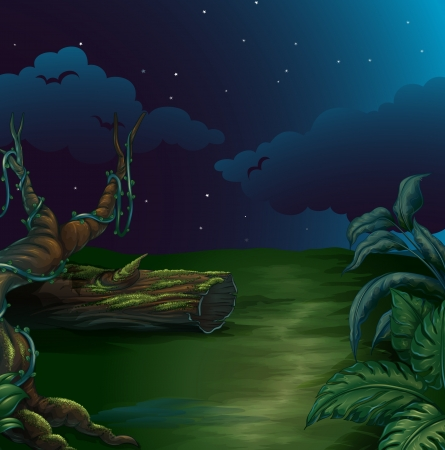 Illustration of a beautiful landscape in a dark night Vector