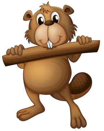 castor: Ilustración de un castor en un fondo blanco Vectores