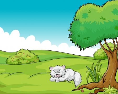Illustration of a cat sleeping Vector