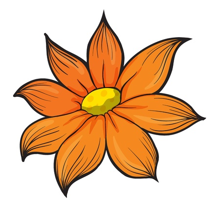 anther: Illustration of an orange flower on a white background