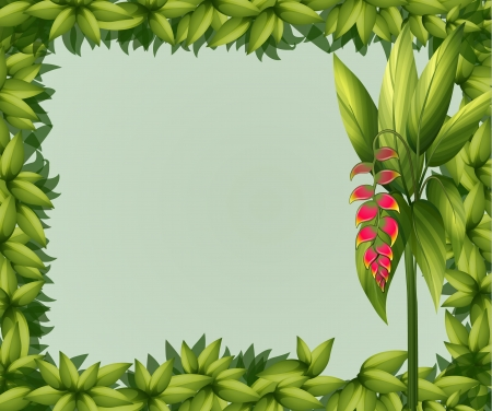beautify: Illustration of a green border on a white background