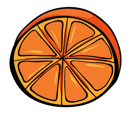 rinds: Illustration of a sliced orange on a white background