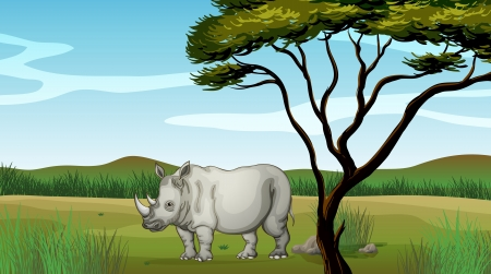 african grey: Illustration of a bull in the forest Illustration