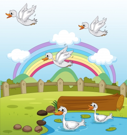 Illustration of ducks and a rainbow and a beautiful landscape Stock Vector - 17442963