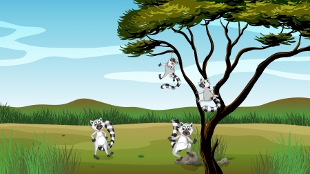 Illustration of wild animals playing in the tree Stock Vector - 17443568