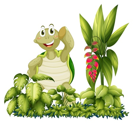 Illustration of a turtle standing with plants on a white background Vector