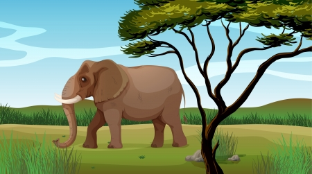 Illustration of a huge elephant Stock Vector - 17443598
