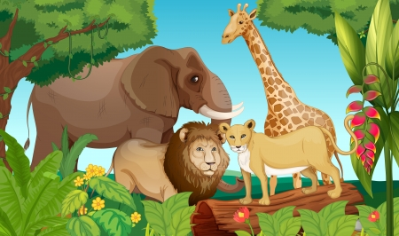 Illustration of animals in the jungle Vector