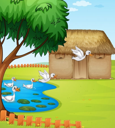 lake house: Illustration of ducks, a house and a beautiful landscape
