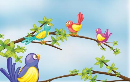 Illustration of colorful birds talking Stock Vector - 17521598