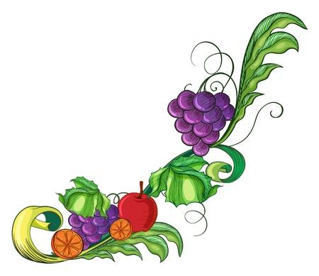 fruity: Illustration of a fruity border on a white background Illustration