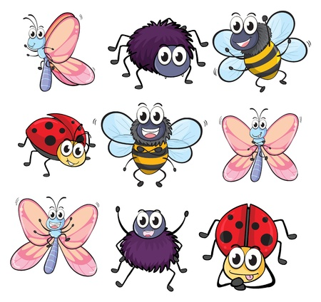 Illustration of colorful insects on a white background Vector