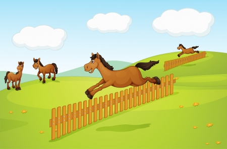Illustration of the four horses in the field Stock Vector - 17521807