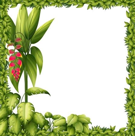 흰색 배경에 꽃과 녹색 프레임의 그림