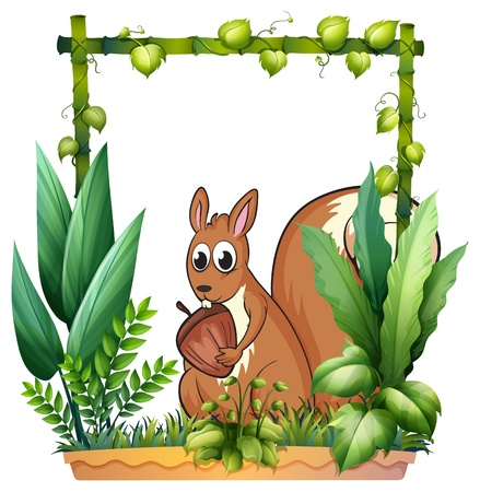 hand holding plant: Illustration of a squirrel with a nut on a white background Illustration