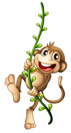 Ilustración de un mono que cuelga en una vid en un fondo blanco