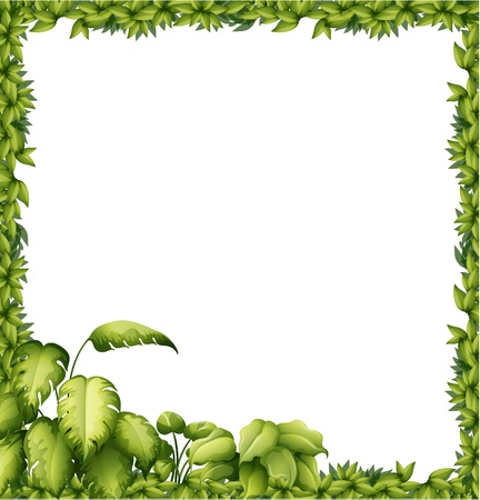 edge design: Illustration of a green frame on a white background Illustration