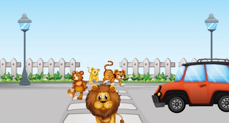 Illustration of wild animals crossing and a car in the road Vector