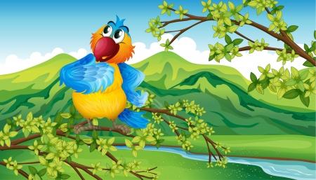 강둑: 강둑 근처 앵무새의 그림 일러스트