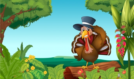 caruncle: Illustration of a turkey in the forest