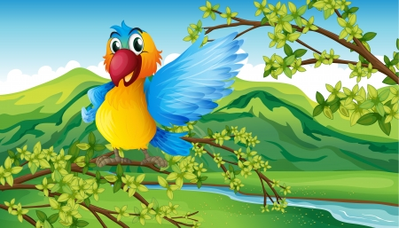 Illustration of a colorful parrot in the forest Stock Vector - 17521757