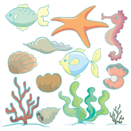 aquatic plant: illustration of various sea animals and plants on a white background