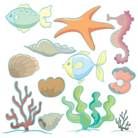 illustration de divers animaux marins et des plantes sur un fond blanc