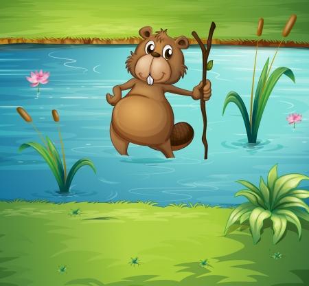 nutria caricatura: Ilustración de un castor con una madera en el río Vectores