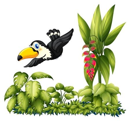 hornbill: Illustrtaion of flying bird in the garden on a white background