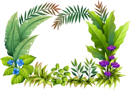 leafy: Illustration of plants and flowers on a white background