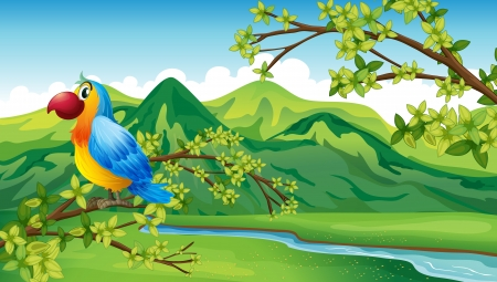 sideview: Illustration of a parrot near the riverbank Illustration